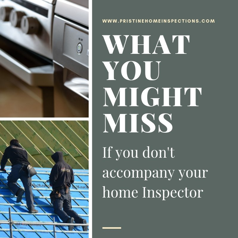 What You Might Miss if You Don't Accompany the Inspector