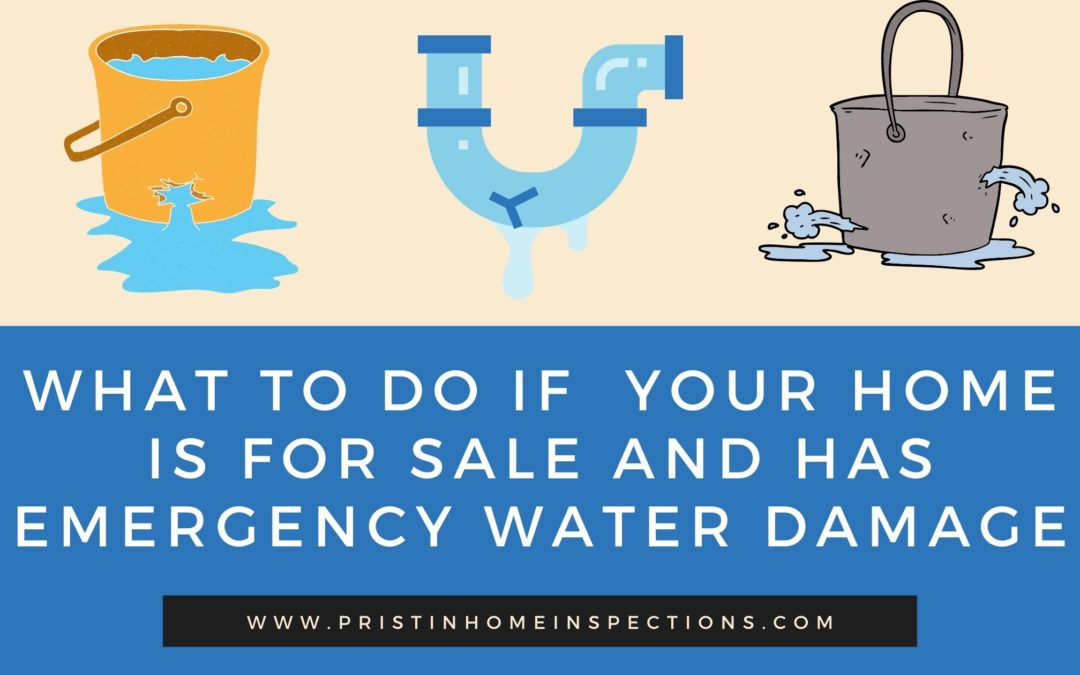 What To Do If  Your Home is For Sale and Has Emergency Water Damage